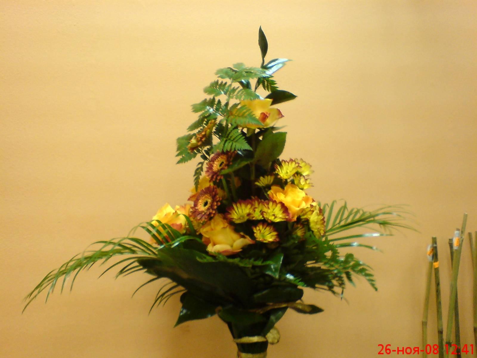 Цветок рабилини